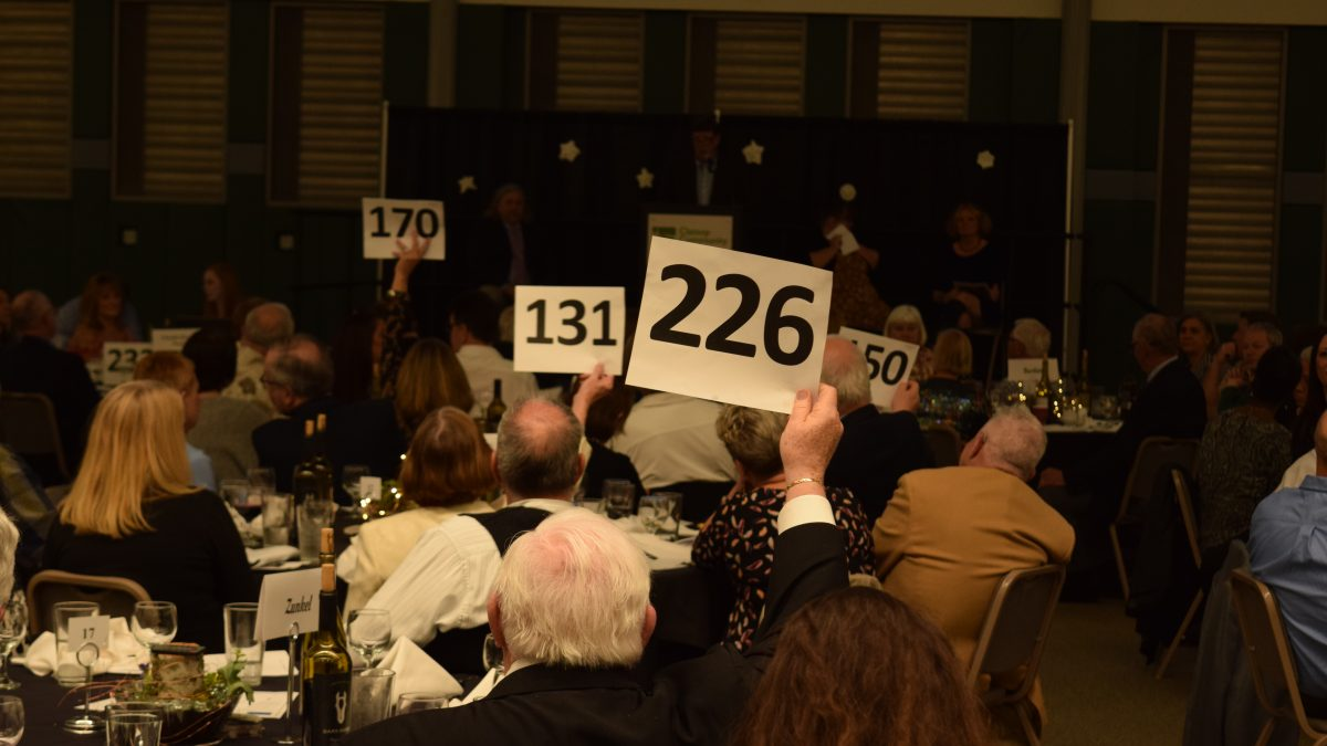 Attendees at the 2018 Foundation Auction raise their paddles to bid on an item