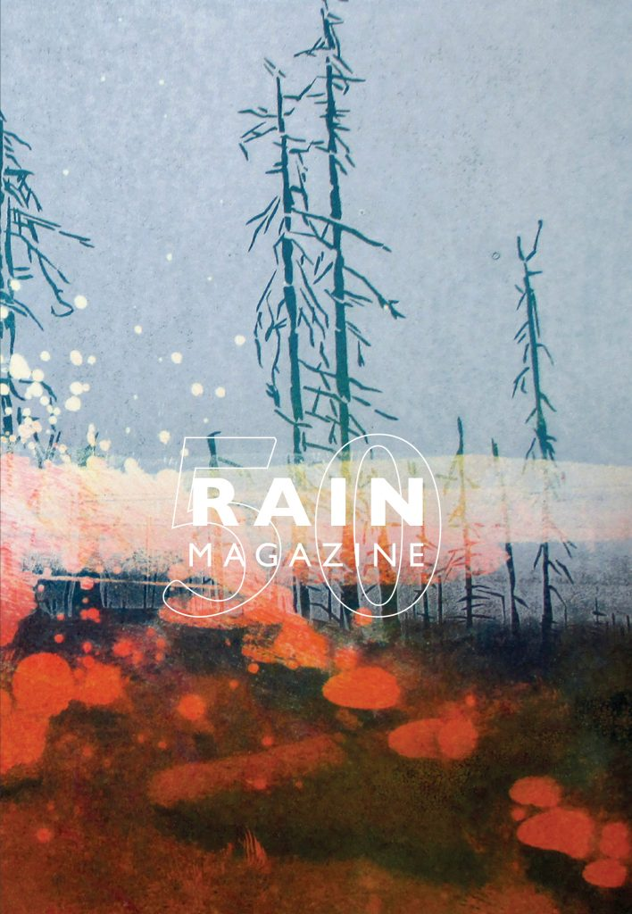 Cover of the 2019 Rain Magazine featuring an image of a forest