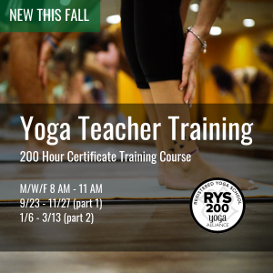New this Fall, Yoga Teacher Training